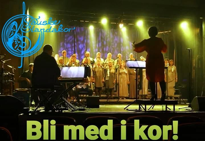 Read more about the article Oppstart korøvelse